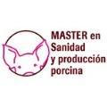 master_porcino.gif