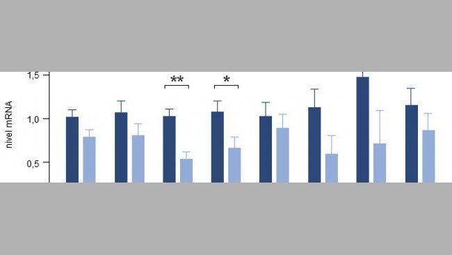 Efecto de la adición de una mezcla de tomillo, vainilla y ácidos orgánicos sobre la expresión génica de diversas citoquinas proinflamatorias en el intestino de lechones