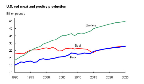 meat production forecasts 2025