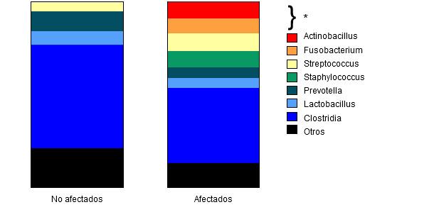 Abundancia relativa en cada grupo de varios géneros de bacterias y de la clase Clostridia.