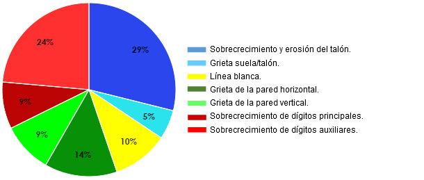 Porcentajes por tipo de lesión