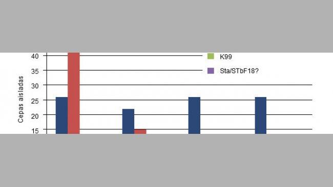 Cepas de E. coli aisladas en campo en función de la edad en lechones procedentes de cerdas sin vacunar