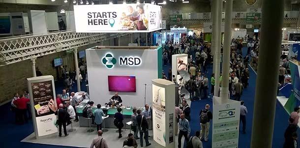 MSD-IPVS.jpg