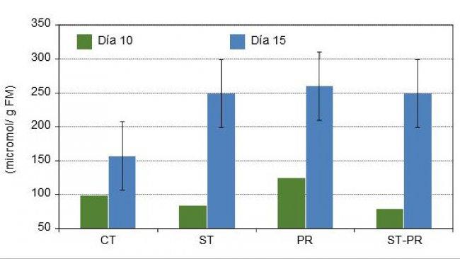 Concentración de ácidos grasos de cadena corta sobre la digesta del colon de lechones de 10 y de 15 días tras el destete con 4 dietas experimentales distintas