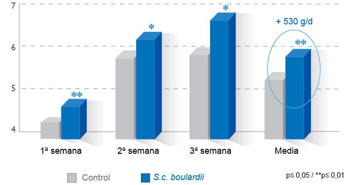 Consumo medio diario de pienso en lactación (kg)