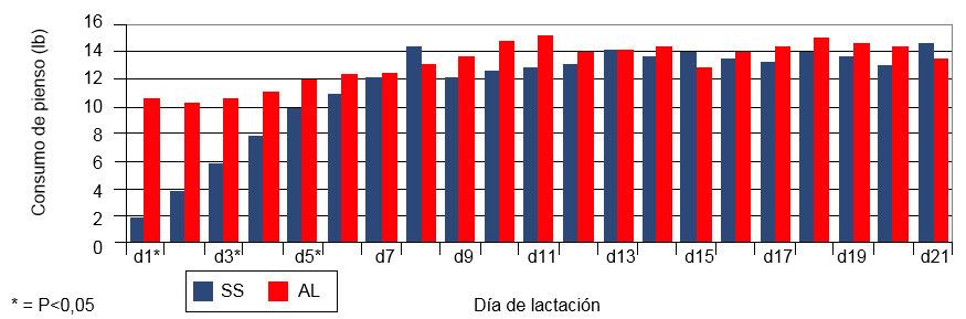 Ingesta diaria de las cerdas durante la lactación con un sistema de alimentación restringido respecto a un sistema ad libitum