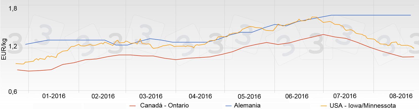 La gráfica del precio del porcino en España en agosto ha sido plana