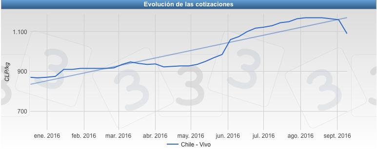 Precio del cerdo en Chile - Vivo