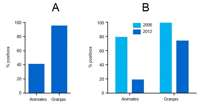 Anticuerpos frente a PCV2 en suero de cerdos de engorde en 2006 y en 2012