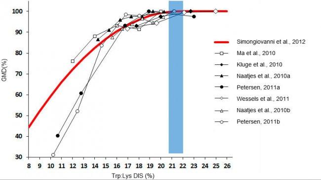 Efecto del ratio triptófano/lisina sobre el crecimiento en lechones