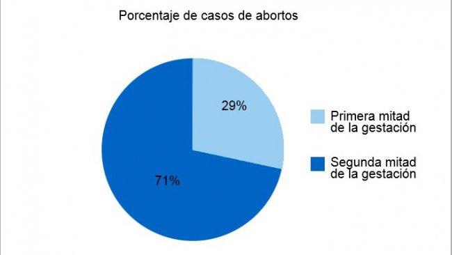 El gráfico circular representa el porcentaje de abortos en la primera y la segunda etapa de la gestación, respectivamente. El gráfico de barras representa la estacionalidad de los abortos.