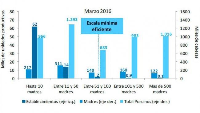 Gráfico 3. Estratificación de establecimientos con existencias porcinas según censo de madres a marzo de 2016. Fuente: Informe de Cadena de Valor. Ministerio de Hacienda y Finanzas Públicas. Argentina