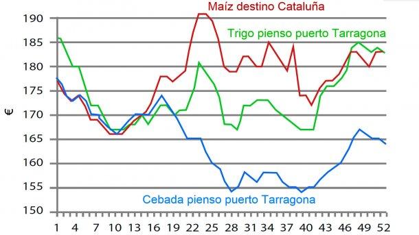 Gráfico 1. Evolución semanal del precio del trigo, el maíz y la cebada en 2016. Fuente: Lonja de Barcelona.