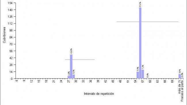 Gráfico 1.- Ejemplo de granja con MB4S, y programación de cubriciones repetidas con hormonas. Intervalo medio de repetición 51,6 días.