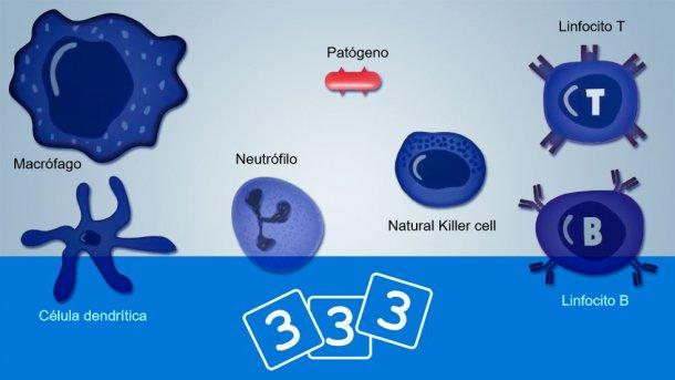 Descubre la inmunología en 3tres3