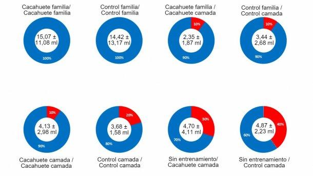 Gráfico 2. Resultados de la prueba número 1- Efecto familia, manteca de cacahuete, entrenamiento el día anterior y la interacción de todos los factores sobre el porcentaje de éxito a la hora de obtener muestras de fluidos orales de los lechones lactantes. En el centro del gráfico puede observarse el volumen medio de la muestra obtenida y la desviación estándar. La parte azul del gráfico muestra el porcentaje de éxito de cada factor, la parte roja del gráfico muestra el porcentaje de error o fallo. La descripción de los factores se puede observar en el título de cada gráfico: saborizante (manteca de cacahuete/ control) y tipo de muestreo en el día de entrenamiento (familia o camada) antes de la barra y saborizante (manteca de cacahuete o control) y tipo de muestreo en día de la recogida de muestras (familia o camada) después de la barra.
