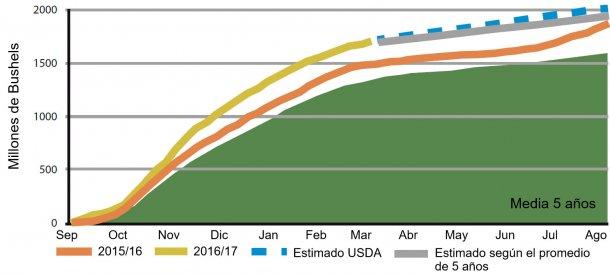 Figura 6: Volumen semanal de exportaciones acumuladas de haba de soja USA, campaña actual y medias anteriores. Fuente: USDA