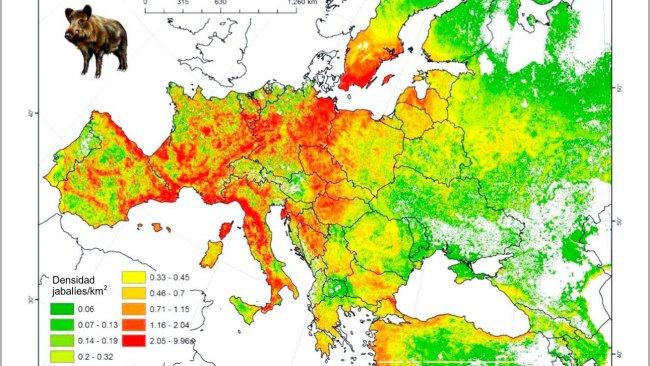 Figura 2: Población modelada de jabalí en Europa. Fuente: FAO-ASFORCE, Mayo 2015