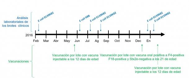 Imagen 1: Análisis de laboratorio de los brotes clínicos y calendario de vacunaciones