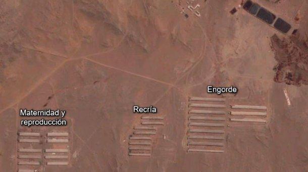 Foto 1. Distribución de la granja.