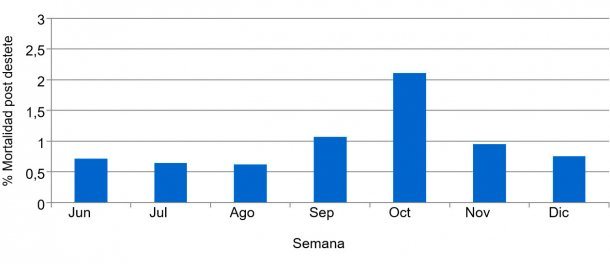 Gráfica 2. Porcentaje de mortalidad post desteteprevio y durante el cuadro sanitario de PED