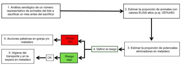 Figura 3. Posible estrategia de control de la salmonelosis porcina.