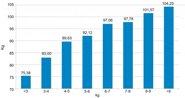 Figura 3. Distribución de los animales en función de su peso (kg) a los 159 días. Los 6 kg de diferencia entre el 5% de cerdos con menos peso y el 5% con más peso que se detectaron al destete (figura 2) se han convertido en 30 kg.