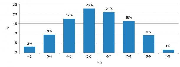 Figura 2. Distribución de los animales según el peso a la entrada al destete. La diferencia entre el 5% de cerdos con menos peso y el 5% con más peso es de 6kg.
