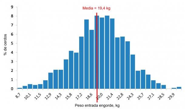 Figura 4. Distribución de pesos a la entrada al engorde.