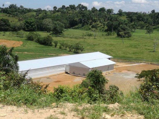 Nugeporc en la República Dominicana