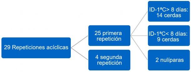 Figura 3. Distribución de repeticiones acíclicas. Tercer trimestre de 2017. ID-1ªC = intervalo destete a primera cubrición.