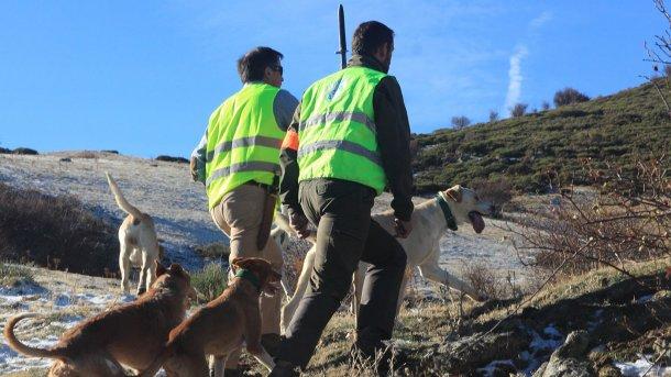 Foto 5: La caza es necesaria pero los perros no deben tener acceso a la explotación.