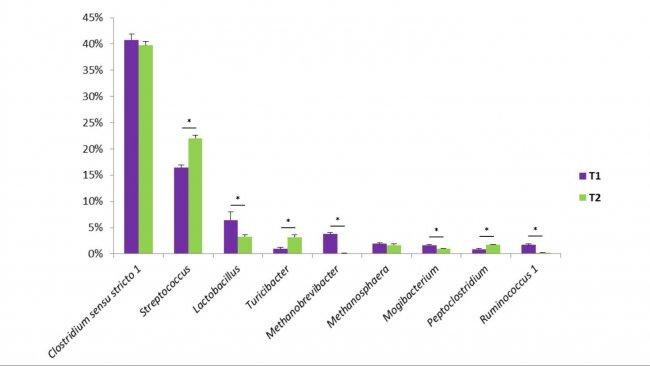 Figure 1. Algunos géneros bacterianos encontrados en las heces porcinas.T1 es el control. T2 es un grupo tratado con una mezcla de Bacillus en el alimento.