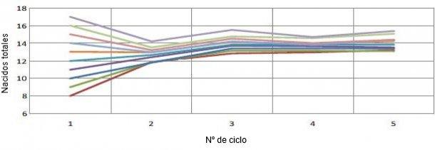 Gráfico 1. Evolución de la prolificidad en función de la prolificidad del primer parto. Por cada lechón al primer parto tendremos 0,4 lechones más por parto (Pinilla et al., 2014).