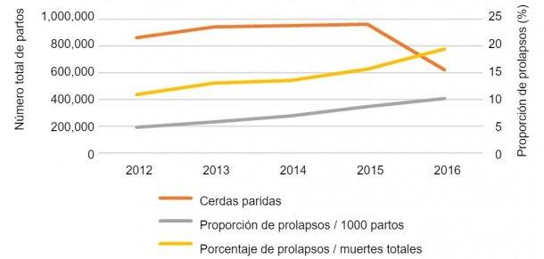 Fig.1. Número total de partos en el análisis y evolución enel tiempo de la proporción de prolapsos de cerdassobre 1000 cerdas paridas o sobre el número total de muertes de cerdas en las granjas.