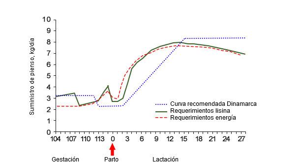 Gráfica 2. Cantidad de pienso requerida para un aporte de energía y lisina ideales en comparación con la curva de alimentación recomendada en Dinamarca durante la transición y lactación (Theil, 2017).