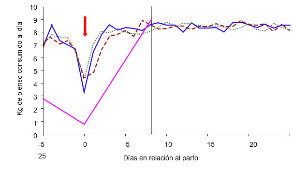 Gráfico 4: Esquema de alimentación de las cerdas en función de la condición corporal de la cerda el día 105 y del régimen de alimentación: ad libitum (verde, azul, rojo) o estándar (rosa) (A. Cools, 2014)