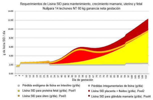 Gráfica 1. Partición de las necesidades de lisina SID, modelización basada en NRC 2012.