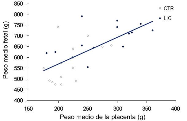 Gráfica 3. Tanto en el grupo control (CTR)  como en el grupo ligado (LIG), grupo al que se le cerró un oviducto, el peso de los fetos es dependiente del peso de la placenta.  (Town, 2005).