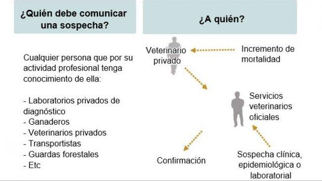 Enfermedades de Declaración Obligatoria (adaptado del MAPAMA, España)
