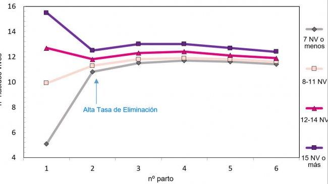 Gráfico 1. Producción a lo largo de la vida de la cerda en función de los lechones nacidos.