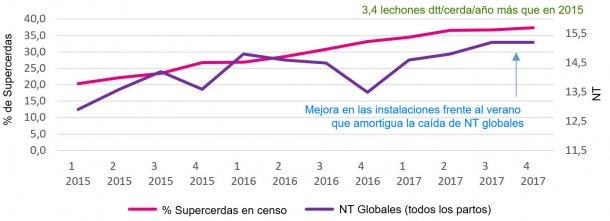 Gráfico 2. Porcentaje de supercerdas y nacidos totales globales.
