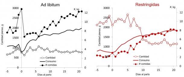 Ilustración 3. Comparación del patrón de alimentación en cantidad y tomas al día de cerdas alimentadas ad libitum frente  a restringidas durante la lactación. (Nutreco R & D, 2015)