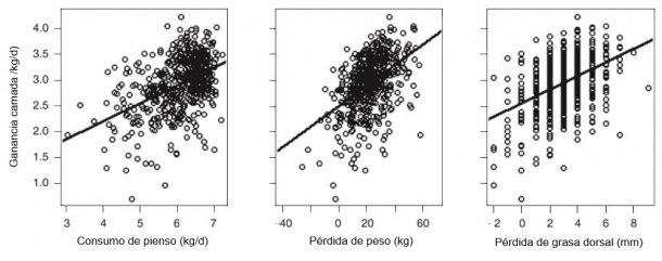 Ilustración 5. Por cada kg más de CMD de la cerda en lactación aumenta la GMD de la camada en 0,34 kg/día. Por cada 1 kg de pérdida de peso de la cerda se incrementó 20 g/día la GMD de la camada. Por cada 1mm de pérdida de P2 de la cerda, se incrementó 130 g/día la GMD de la camada (A. V. Strathe, 2015)