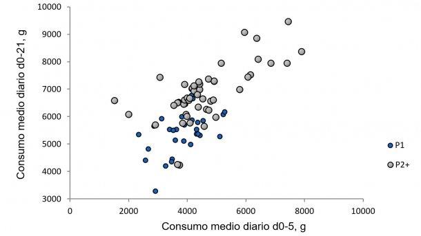 Ilustración 1. Relación entre el consumo medio diario de la cerda los primeros cinco días de lactación con respecto al consumo durante el resto de la lactación. (Nutreco R & D, 2015)