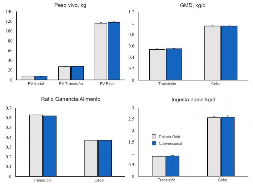 Figura 1. Crecimiento de cerdos de engorde alimentados con DDGS Dakota Gold o Convencional.