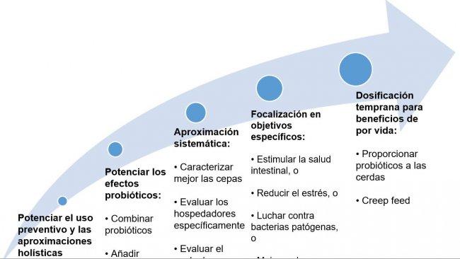 Figura 2. Estrategias para mejorar el uso de probióticos en etapas tempranas.