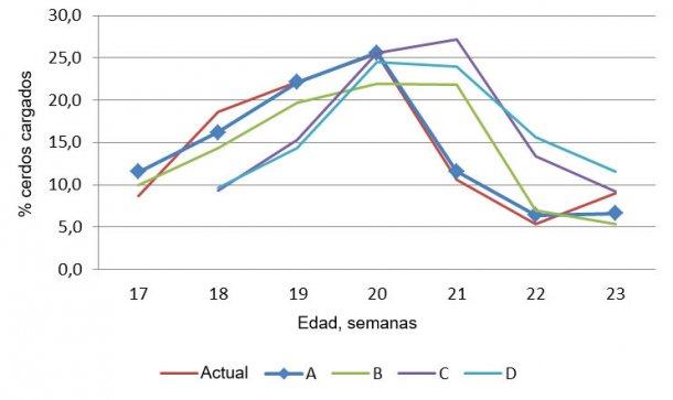 Gráfico 2. Porcentaje de cerdos que se cargan para matadero entre la semana 17 y 23 de edad según el plan de alimentación (actual, A, B, C o D)