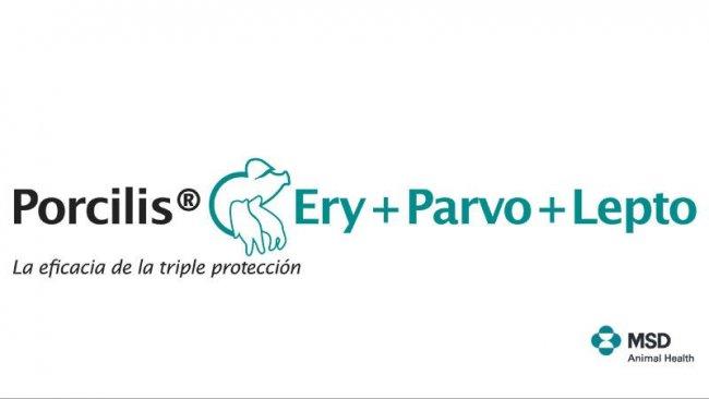 Porcilis® Ery+Parvo+Lepto
