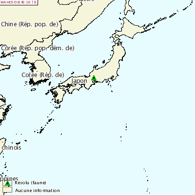 PPC Japon